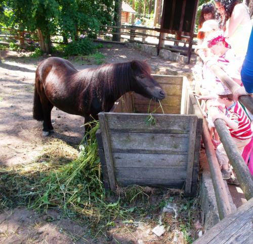 'Šnekučiai' Rygos zoologijos sode