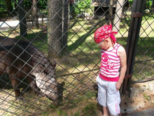 'Šnekučiai' Rygos zoologijos sode4