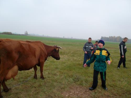 5 šeimyna kaimo sodyboje10