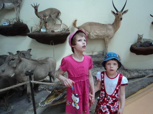 8 šeimyna medžioklės trofėjų muziejuje1