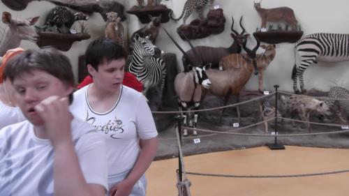 9 šeimyna medžioklės trofėjų muziejuje1