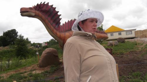 Gita Dino parke