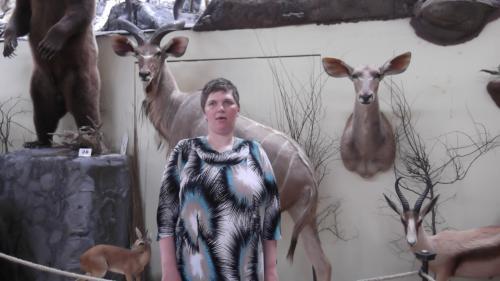 Gita medžioklės trofėjų muziejuje