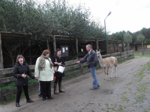 Mini zoosode, Klaipėdos rajone