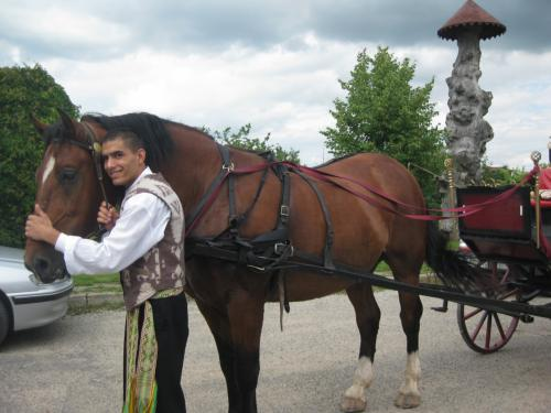 Myliu žirgelį