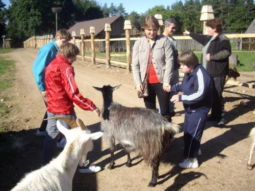 Pažintis su ožkomis