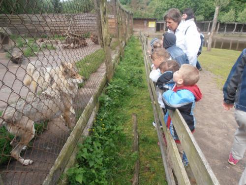 Susipažįstame su zoologijos sodo gyventojais