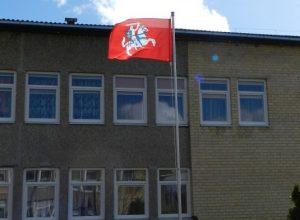 Suplevėsavo Lietuvos valstybės istorinė vėliava